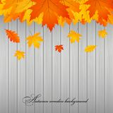 Autumn wooden background. Gold leaves Royalty Free Stock Photos