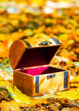 Wooden box in autumn leaves Royalty Free Stock Photos