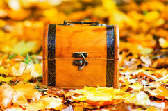 Wooden box in autumn leaves Stock Photography