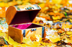 Wooden box in autumn leaves Stock Photos