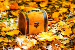Wooden box in autumn leaves Royalty Free Stock Photography