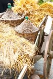 Autumn wooden cart Royalty Free Stock Image