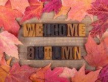 Autumn Wooden Lettering bienvenu et frontière colorée de feuille photo stock