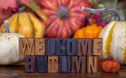 Autumn Wooden Text bienvenu avec le fond coloré image stock