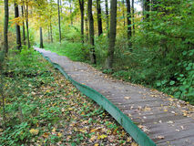 Autumn. Wooden walkway in the park. Wooden walkway in autumn park. Fallen leaves. Nature Royalty Free Stock Image