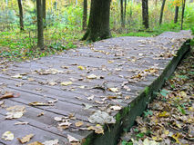 Autumn. Wooden walkway in the park. Wooden walkway in autumn park. Fallen leaves. Nature Stock Photos
