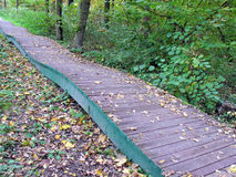 Autumn. Wooden walkway in the park. Wooden walkway in autumn park. Fallen leaves. Nature Stock Photography