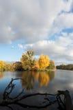 Autumn woodland scene Royalty Free Stock Photo