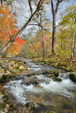 Autumn woodsy river 10. A landscape on small woodsy river, autumn Royalty Free Stock Photography
