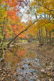 Autumn woodsy river 17. A landscape on small woodsy river, autumn Stock Photo