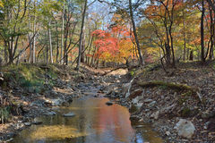 Autumn woodsy river 20. A small woodsy river. An autumn Royalty Free Stock Photo