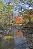 Autumn woodsy river 19. A small woodsy river. An autumn Royalty Free Stock Photography