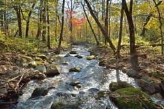 Autumn woodsy river 2 Stock Photos
