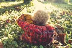 Autumn woolly hat. Woolly hat on the ground in autumn sunlight Royalty Free Stock Photography