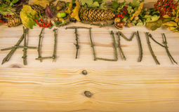Autumn word and forest elements Royalty Free Stock Image