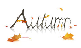 Autumn Word Made from Maple Branches. Maple leaves and branches shaped as letters from the alphabet forming the word Autumn isolated on a white background Stock Photos