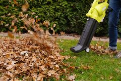 Scraping the leaves with the help of a blower. Autumn work in the garden. royalty free stock image