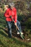 Autumn works in garden. Autumn season - woman work in garden Stock Image