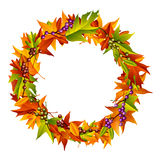 Autumn Wreath. A colorful Thanksgiving and autumn inspired wreath Stock Images
