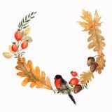 Autumn Wreath con las hojas roble, bellotas y ramas Acuarela f stock de ilustración