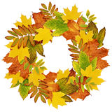 Autumn wreath from dry colored leaves Royalty Free Stock Images