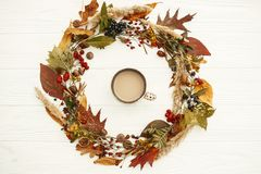 Autumn Wreath Flat Lay. Coffee in Fall leaves circle with berrie. S, nuts, acorns, flowers,herbs on rustic white background top view. Seasons greetings. Space stock photo