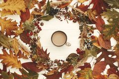 Autumn Wreath Flat Lay. Coffee in Fall leaves circle with berrie. S, nuts, acorns, flowers,herbs on rustic white background top view. Seasons greetings. Space stock images