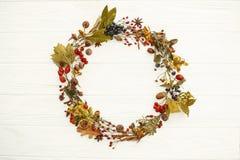 Autumn Wreath Flat Lay Fall verlässt im Kreis mit Beeren, Nüsse, lizenzfreie stockfotografie