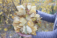 Autumn Wreath in hands Stock Photography