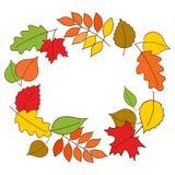 Autumn Wreath Hojas de otoño coloridas en la forma de guirnalda en el fondo blanco Vector dibujado mano del ejemplo Foto de archivo libre de regalías