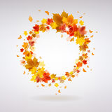 Autumn Wreath of Maple Leaves. With butterflies on a light background Royalty Free Stock Image