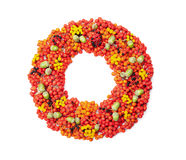 Autumn wreath from rowan, acorns, flowers and various fruits isolated on white background top view. Flat lay styling. Royalty Free Stock Photo