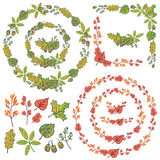 Autumn wreath set. Leaves, berries,branches Stock Photos