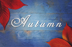 Autumn written on blue, grunge, wooden background with Autumn Leaves. Stock Image