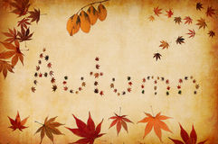 Autumn written by leaves Royalty Free Stock Photography