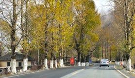 The autumn of Xinduqiao Stock Photos