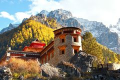 The Autumn at Yading Nature Reserve in Daocheng County ,China Royalty Free Stock Images
