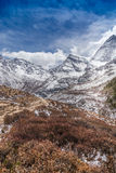 The Autumn at Yading Nature Reserve in Daocheng County ,China Royalty Free Stock Photography