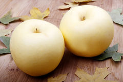 Autumn yellow apples Stock Image
