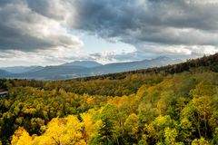Autumn yellow forrest with mountain back ground. Blue sky with rainy cloud and yellow autumn forrest trees mountain as far back ground stock photography