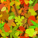Autumn yellow leaf seamless pattern Stock Photography