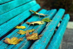 Autumn yellow leaves on bench. Autumn begining yellow leaves on blue old bench royalty free stock image