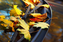 Autumn yellow leaves on the car Royalty Free Stock Images