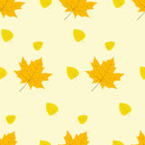 Autumn yellow leaves pattern vector illustration Royalty Free Stock Images