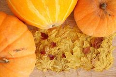 Autumn yellow leaves and pumpkin harvest Royalty Free Stock Photos