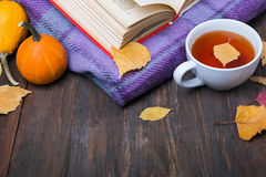 Autumn yellow leaves, pumpkins, tea, blanket and book Stock Image