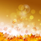Autumn Yellow Leaves sur le fond d'or Images stock