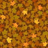 Autumn yellow maple leaf seamless pattern Stock Photo