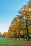 Autumn yellow and red leaf trees in a park in England Stock Photo