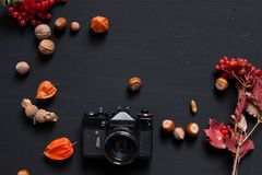 Autumn yellow and Red leaves of fruit nuts meal. Autumn yellow and Red leaves of fruit nuts stock photos